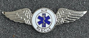 Air Rescue Wings Pin